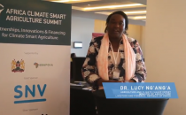 Interview with Dr. Lucy Ng'ang'a, Agriculture and Climate Change Expert, Ministry of Agriculture